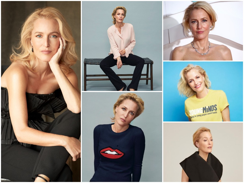 Gillian Anderson BioGraphy Cover